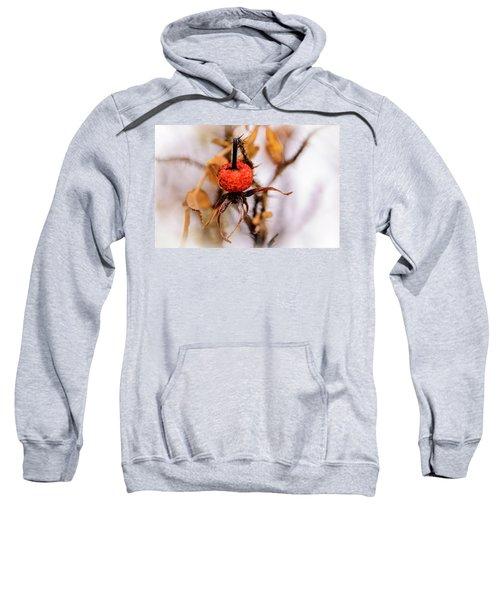 Frozen Hip II Sweatshirt