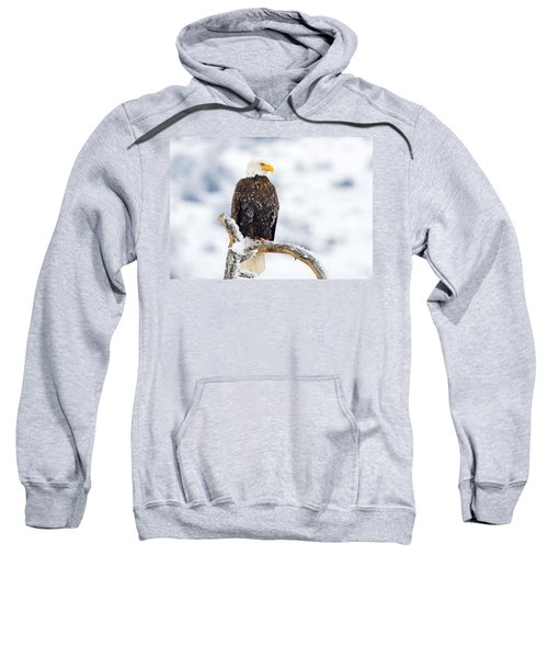 Frozen Watch Sweatshirt