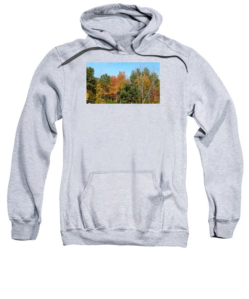 Full Fall Sweatshirt