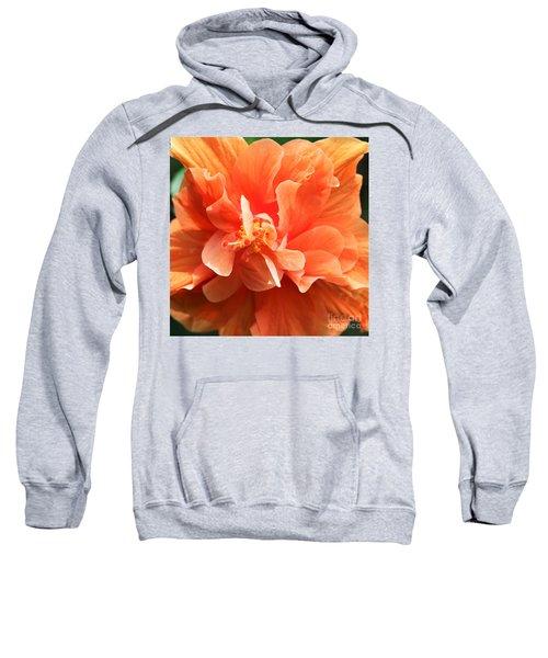 Full Frontal Squared Sweatshirt