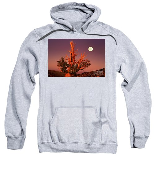 Full Moon Behind Ancient Bristlecone Pine White Mountains California Sweatshirt