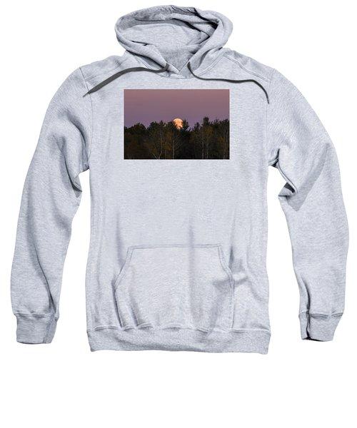Full Moon Over Orchard Sweatshirt