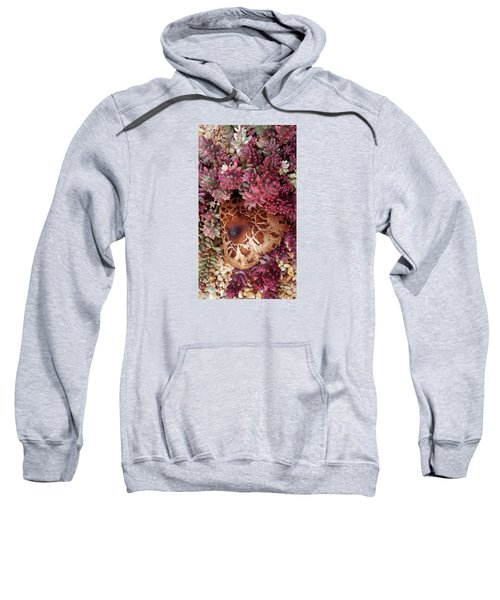 Fungus And Succulents Sweatshirt