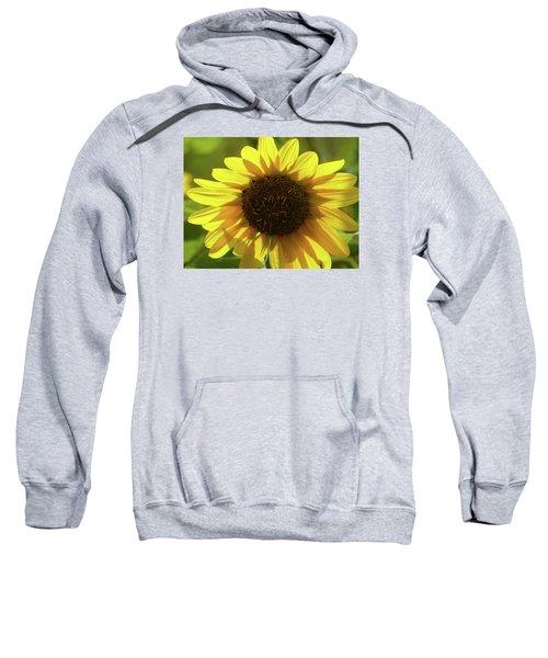 Garden Sunshine Sweatshirt