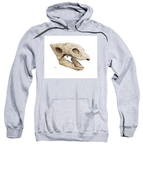 Gastonia Burgei Skull Sweatshirt