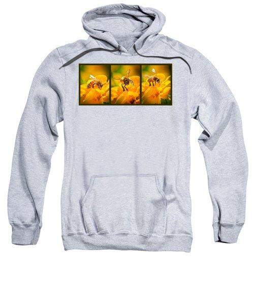 Gathering Pollen Triptych Sweatshirt