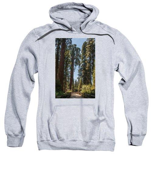 General Grant Tree Kings Canyon National Park Sweatshirt