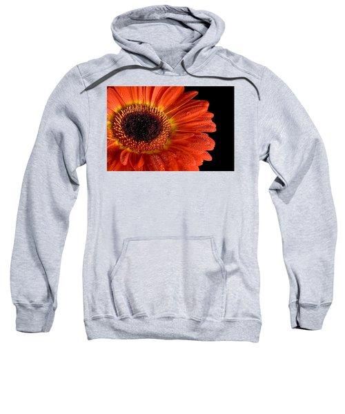 Gerbera I Sweatshirt