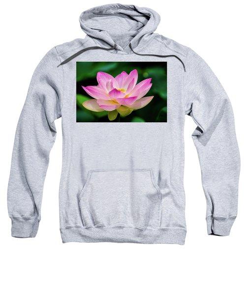 Gigantic Lotus Red Lily Sweatshirt