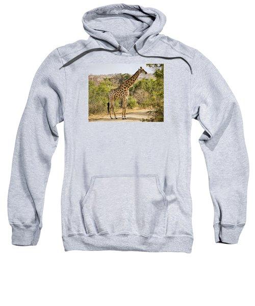Giraffe Grazing Sweatshirt