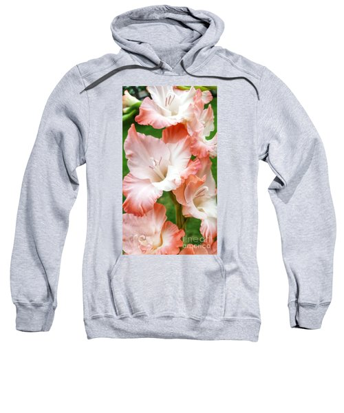 Gladiolus Ruffles  Sweatshirt
