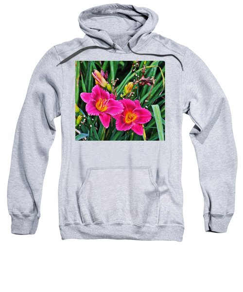 Glorious Daylilies Sweatshirt