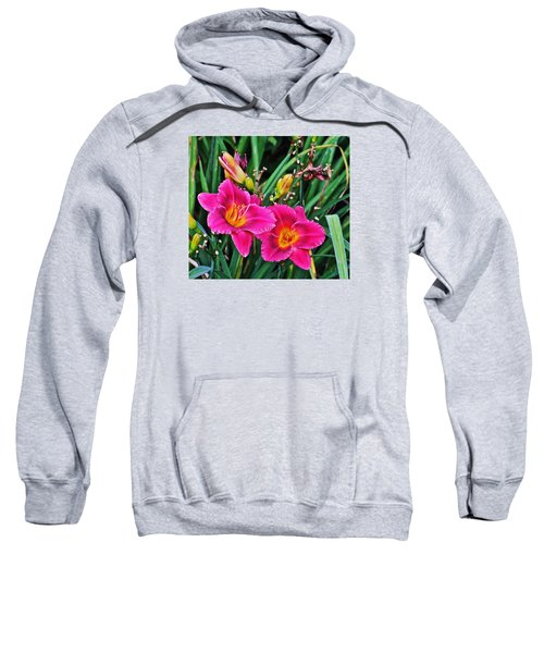 Glorious Daylilies Sweatshirt