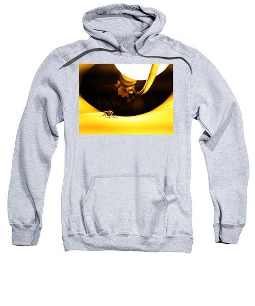 Glow Fly Sweatshirt