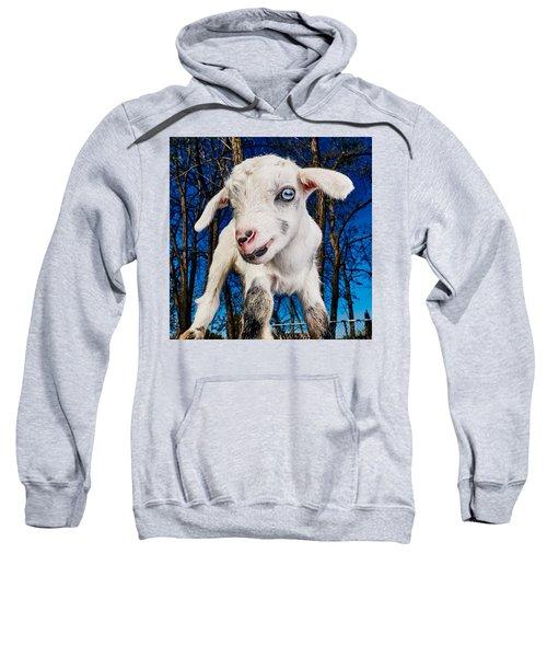 Goat High Fashion Runway Sweatshirt