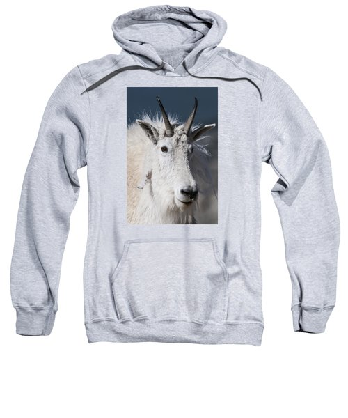 Goat Portrait Sweatshirt