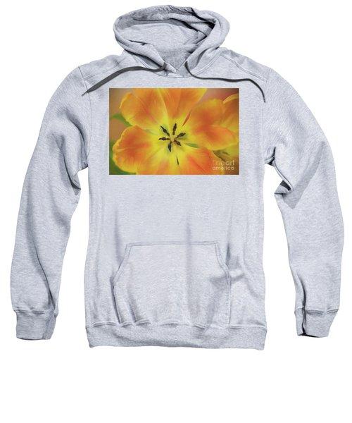 Gold Tulip Explosion Sweatshirt