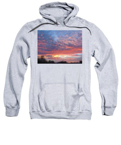 Golden Eye Landing In The Desert Sweatshirt