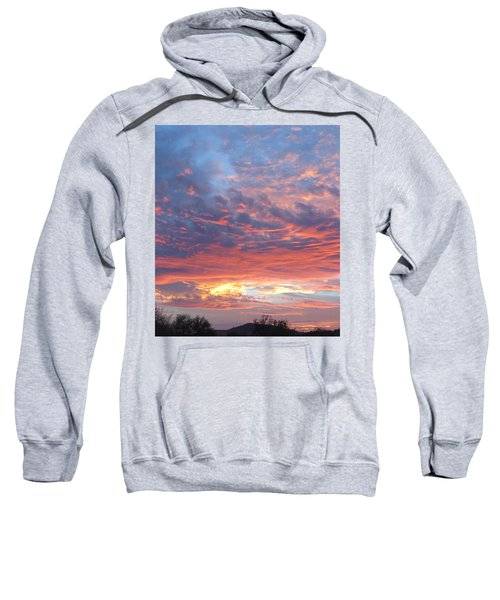 Golden Eye Landing In The Desert Sweatshirt