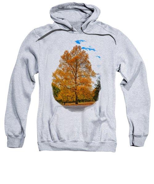 Golden Fall Colors 2 Sweatshirt
