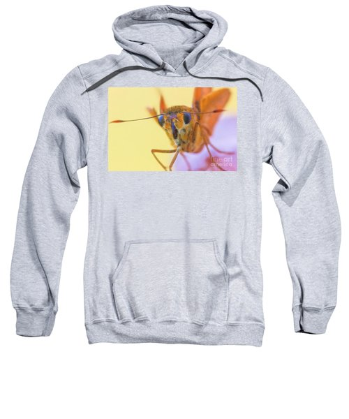 Golden Moth Sweatshirt