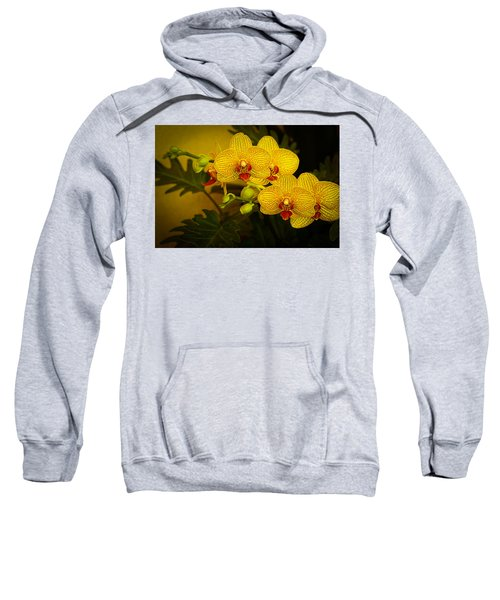 Golden Orchids Sweatshirt