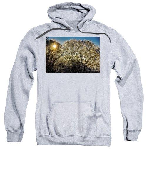 Golden Snow Sweatshirt