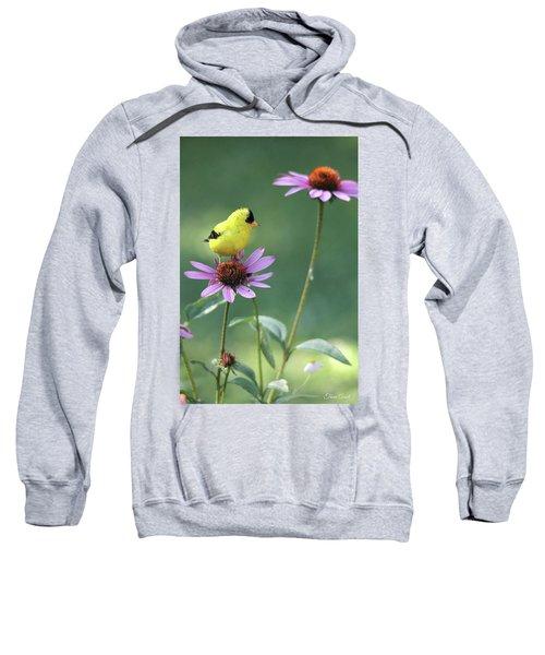 Goldfinch On A Coneflower Sweatshirt