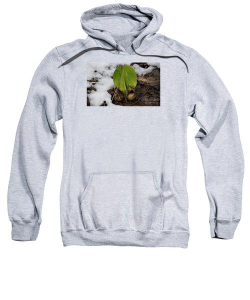 Goodbye Winter Sweatshirt