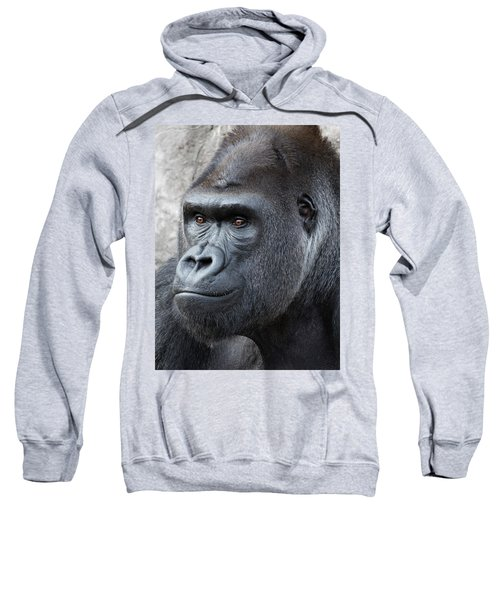 Gorillas In The Mist Sweatshirt