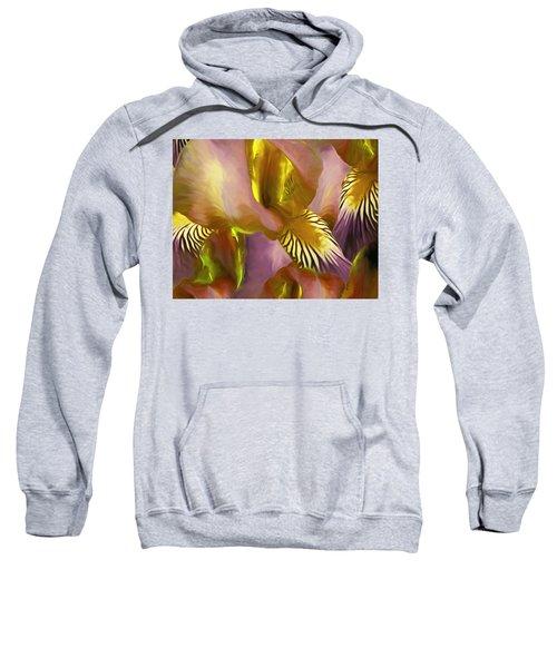 Gossameera 30 Sweatshirt