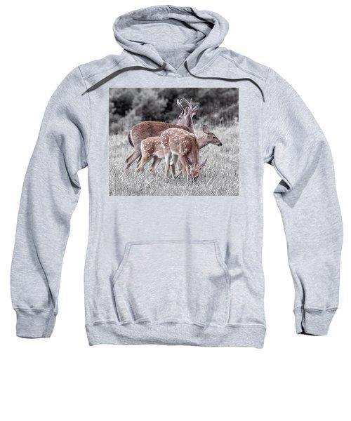 Humor Got Some Doe And Two Bucks Sweatshirt