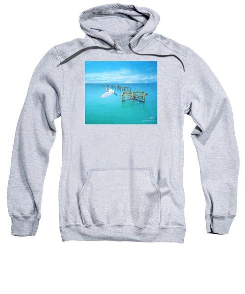 Graceful Flight Sweatshirt