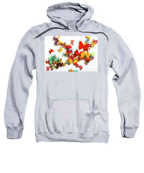 Grand Merger Of Unification Sweatshirt