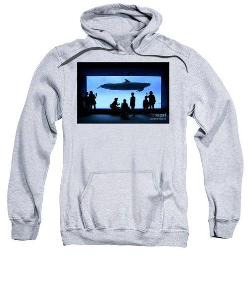Grand Whale Sweatshirt by Tatsuya Atarashi