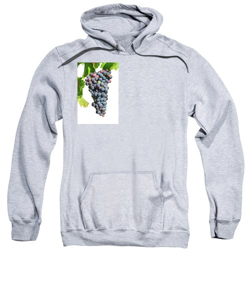 Grapes On Vine Sweatshirt