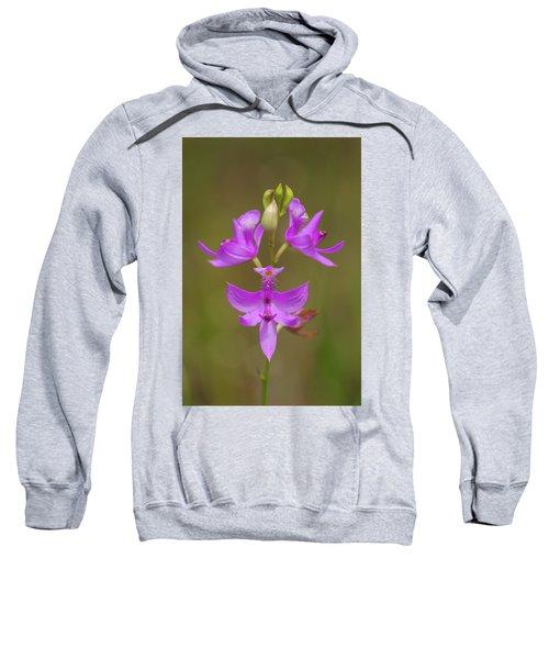 Grasspink #1 Sweatshirt