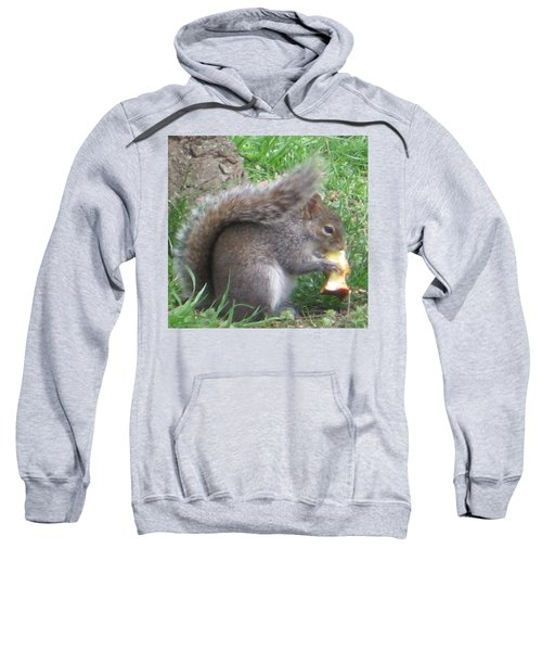 Gray Squirrel With An Apple Core Sweatshirt
