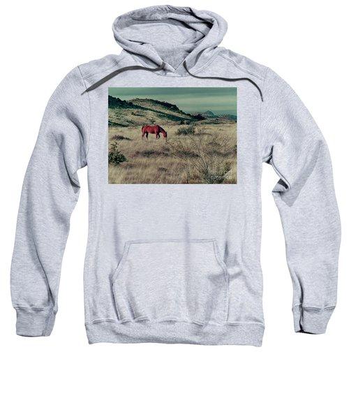Grazing Solo Sweatshirt