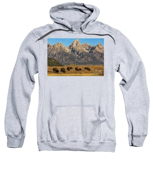 Grazing Under The Tetons Wildlife Art By Kaylyn Franks Sweatshirt