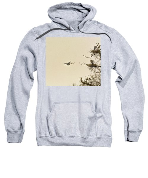 Great Blue Heron Nest Building Sweatshirt