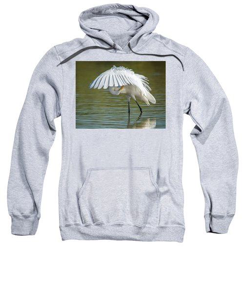 Great Egret Preening 8821-102317-2 Sweatshirt