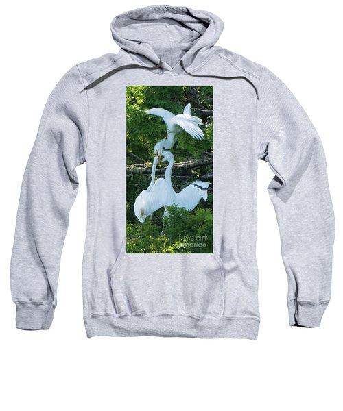 Great Egrets Horsing Around Sweatshirt