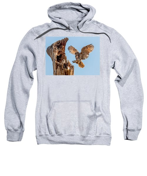 Great Horned Owl Returning To Her Nest Sweatshirt