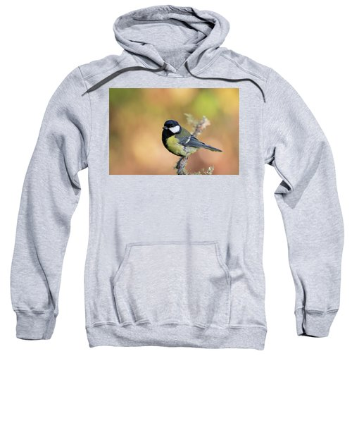 Great Tit - Parus Major Sweatshirt