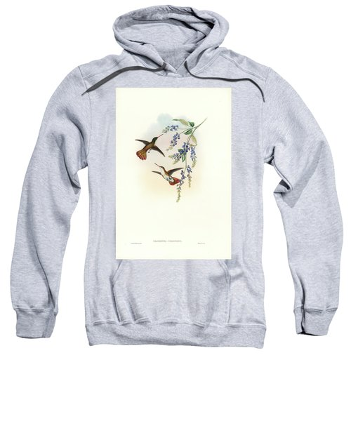 Sweatshirt featuring the painting Green-fronted Hummingbird Amazilia Viridifrons by John and Elizabeth Gould