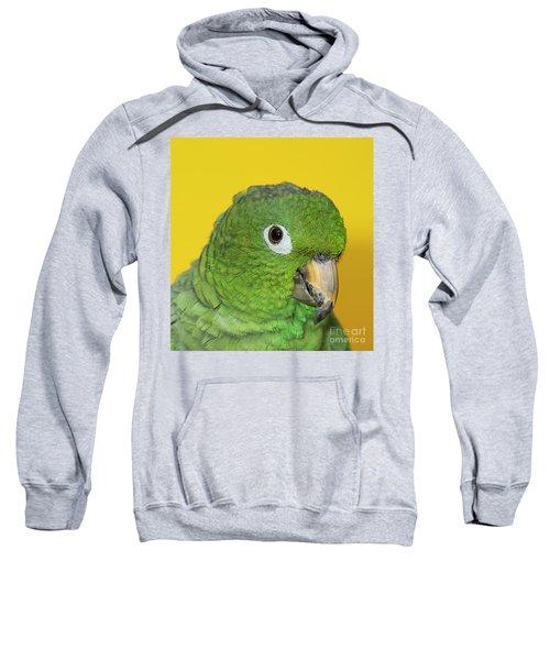 Green Parrot Head Shot Sweatshirt
