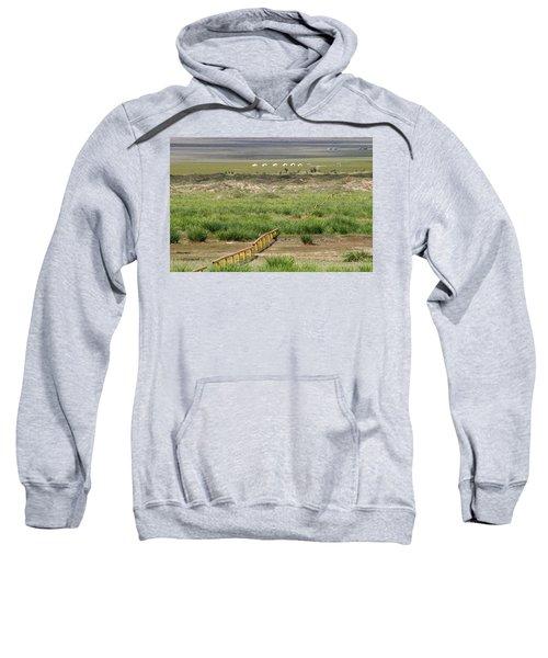 Sweatshirt featuring the photograph Greenery In Desert, Gobi, 2016 by Hitendra SINKAR