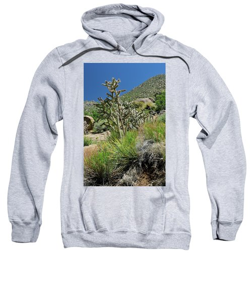 Greening Of The High Desert Sweatshirt