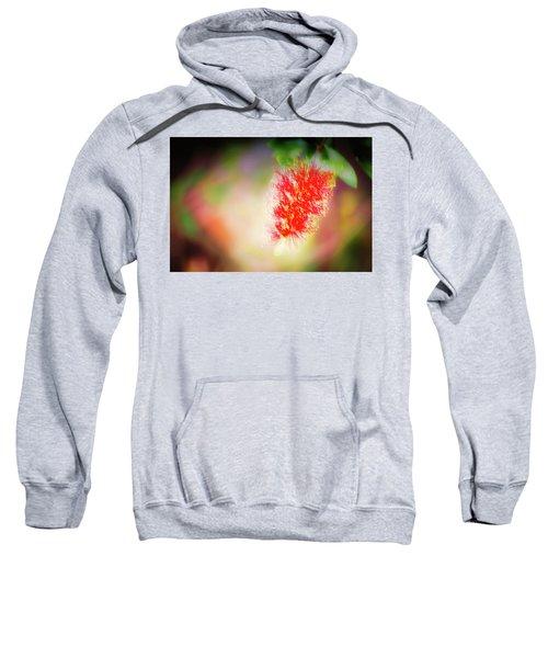 Grevillea Dream Sweatshirt